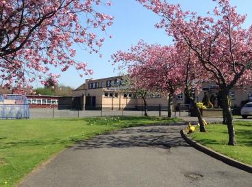School drive in Spring